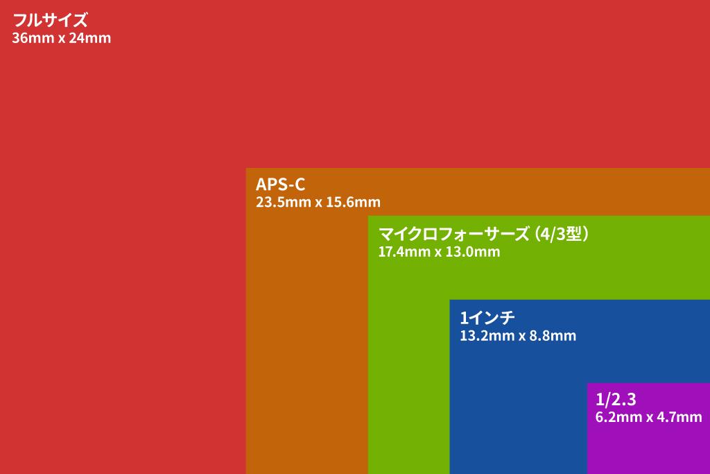 C aps フル サイズ
